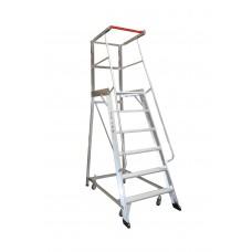 Monstar 6 Step Order Picking Ladder